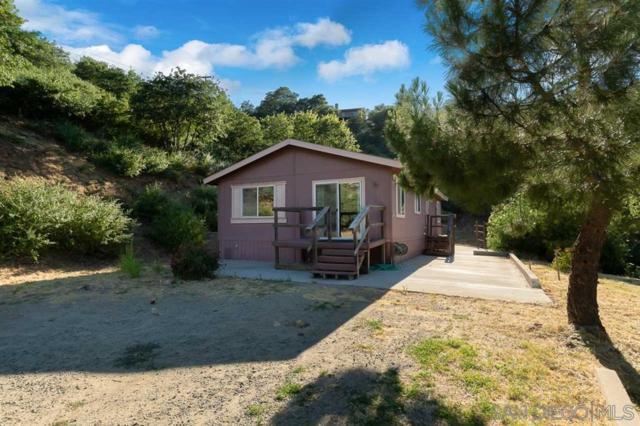 3247 Canyon Dr., Julian, CA 92036 (#190040302) :: Ascent Real Estate, Inc.
