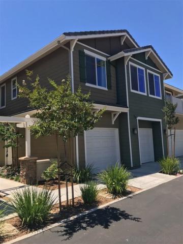 1330 Shoshone Falls Dr, Ramona, CA 92065 (#190040310) :: Coldwell Banker Residential Brokerage
