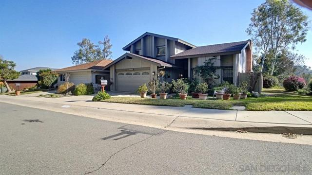10043 Canyonview Ct, Spring Valley, CA 91977 (#190040419) :: Pugh | Tomasi & Associates