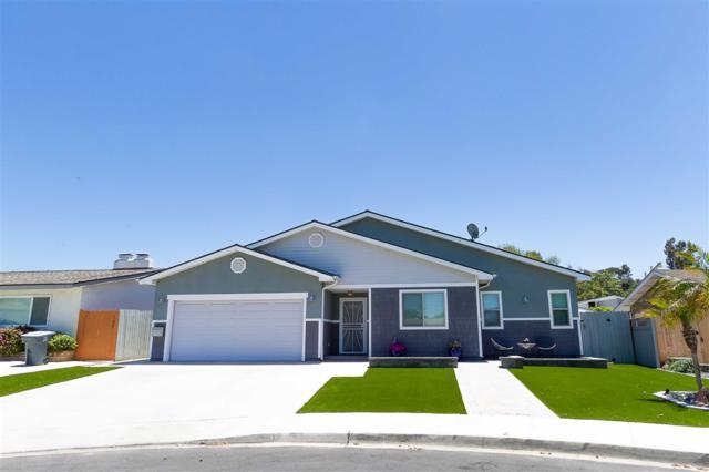 4589 Dauer Ave, La Mesa, CA 91942 (#190040606) :: Pugh | Tomasi & Associates