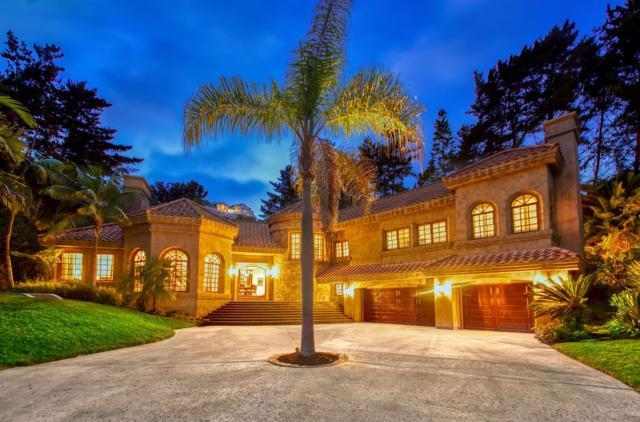 14858 De La Valle Place, Del Mar, CA 92014 (#190040912) :: Coldwell Banker Residential Brokerage