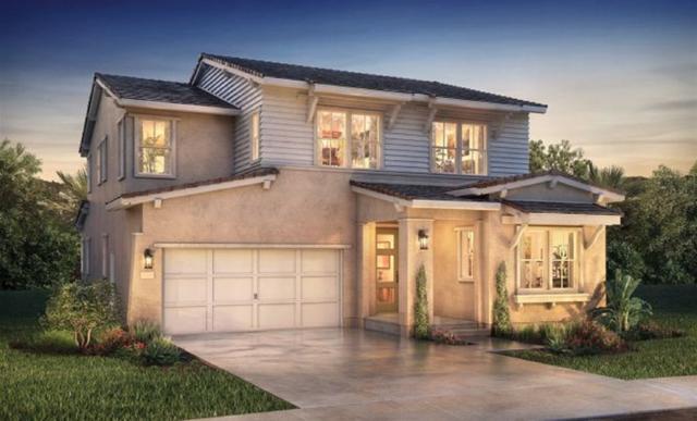 1162 Calle Deceo, Chula Vista, CA 91913 (#190041069) :: Neuman & Neuman Real Estate Inc.