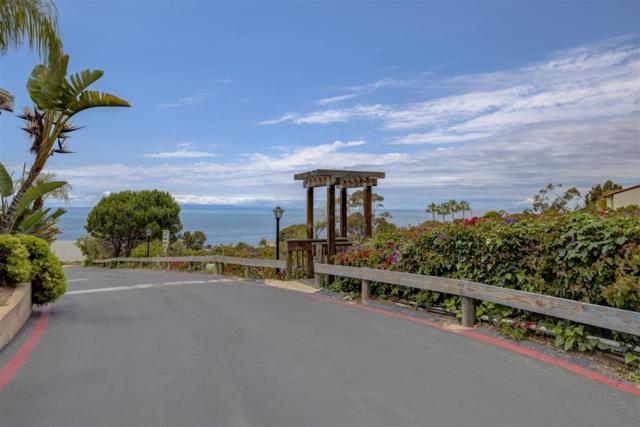 30802 S Pacific Coast Highway Spc K19, Laguna Beach, CA 92651 (#190041158) :: Neuman & Neuman Real Estate Inc.
