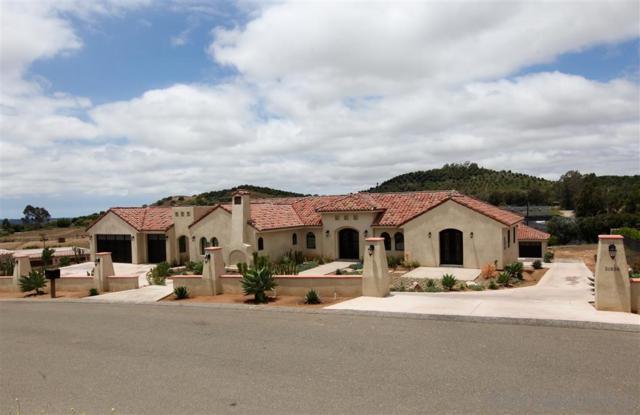 31838 Villa Del Cielo Drive, Fallbrook, CA 92028 (#190041615) :: Neuman & Neuman Real Estate Inc.