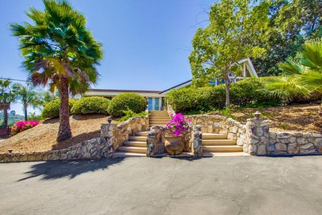 4666 Vernette Dr, El Cajon, CA 92020 (#190041861) :: Neuman & Neuman Real Estate Inc.