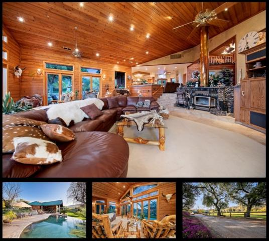 3260 Shady Hollow Ln, Jamul, CA 91935 (#190042200) :: Coldwell Banker Residential Brokerage