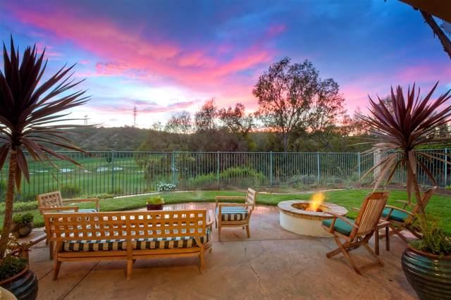 6749 Mallee St, Carlsbad, CA 92011 (#190043382) :: Neuman & Neuman Real Estate Inc.