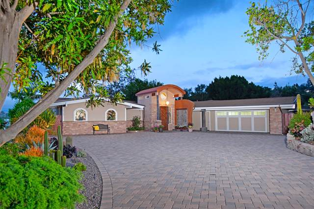 10167 Country View Rd, La Mesa, CA 91941 (#190043911) :: Neuman & Neuman Real Estate Inc.