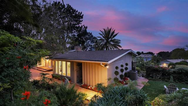 757 Hoska Drive, Del Mar, CA 92014 (#190044215) :: Neuman & Neuman Real Estate Inc.