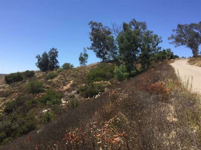 11.22 acres on Double K Rd Parcel 2 Of Pm , Valley Center, CA 92082 (#190044833) :: Allison James Estates and Homes