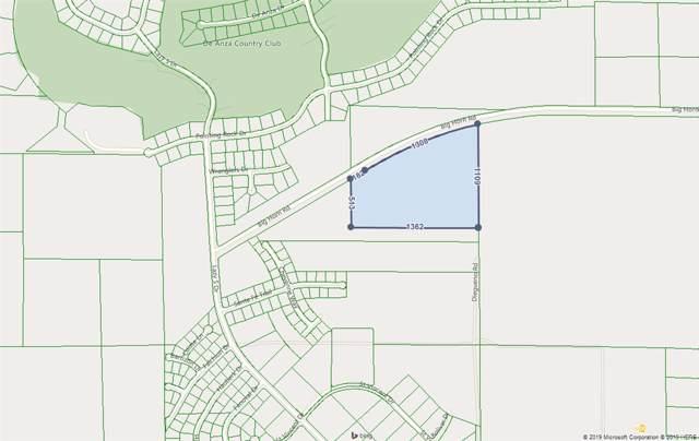Big Horn Rd #00, Borrego Springs, CA 92004 (#190045014) :: Coldwell Banker Residential Brokerage
