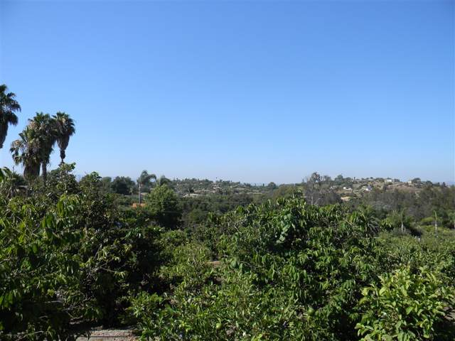 Sleeping Indian Road #22, Fallbrook, CA 92028 (#190045086) :: Whissel Realty
