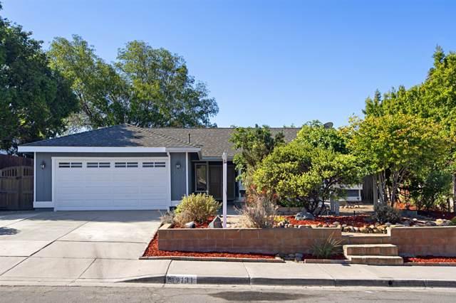 9131 Camino Lago Vista, Spring Valley, CA 91977 (#190045620) :: Neuman & Neuman Real Estate Inc.