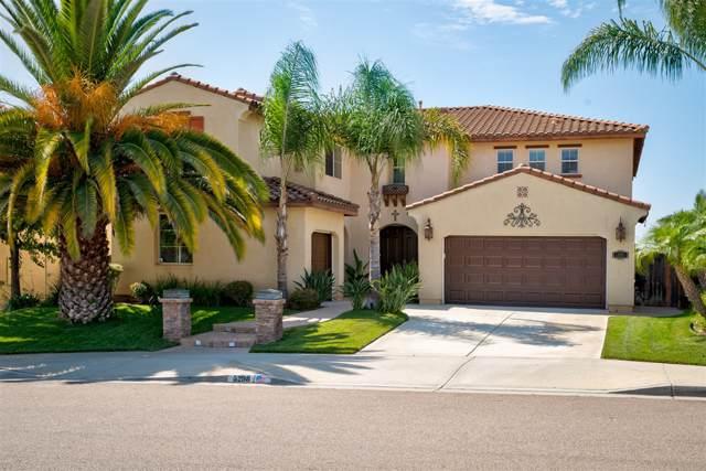 5298 Willow Walk Rd, Oceanside, CA 92057 (#190045710) :: Allison James Estates and Homes