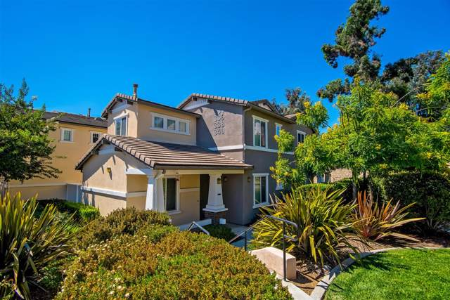 338 Borden Rd, San Marcos, CA 92069 (#190045741) :: San Diego Area Homes for Sale