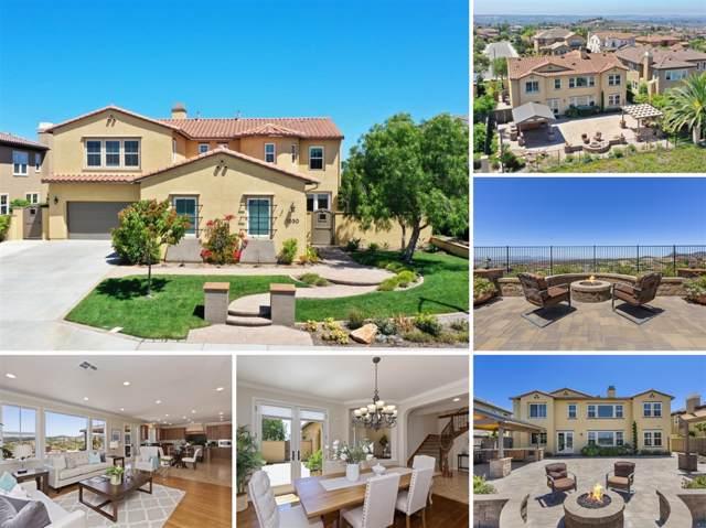1050 Straightaway Court, Oceanside, CA 92057 (#190045839) :: Coldwell Banker Residential Brokerage