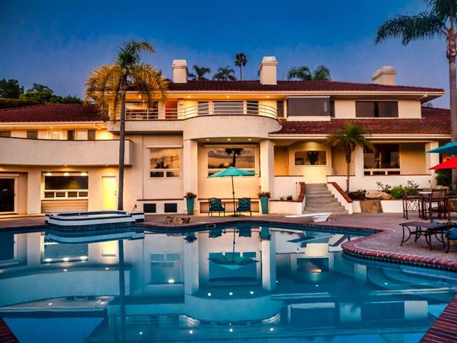 3220 Piragua Street, Carlsbad, CA 92009 (#190046368) :: Allison James Estates and Homes