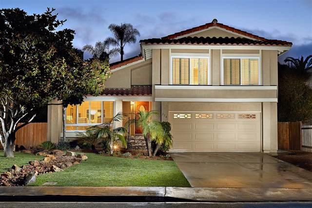 254 Avenida De Los Claveles, Encinitas, CA 92024 (#190046438) :: The Stein Group