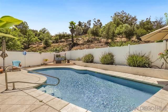 1193 Benjamin Pl, El Cajon, CA 92020 (#190046516) :: Neuman & Neuman Real Estate Inc.
