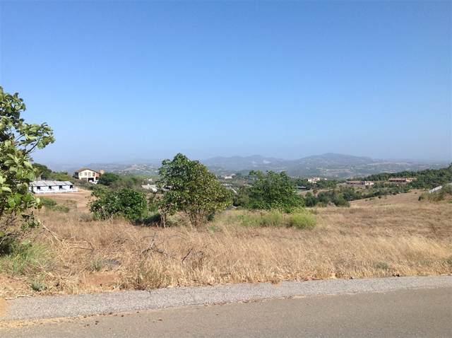Lot 1 Villa Del Cielo #1, Bonsall, CA 92003 (#190046684) :: Neuman & Neuman Real Estate Inc.