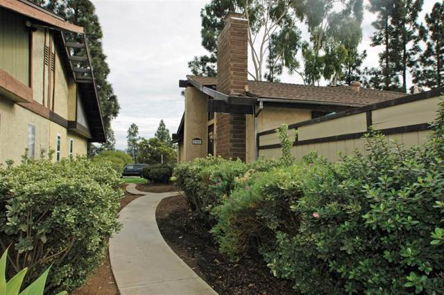 2309 Nueces Lane, Spring Valley, CA 91977 (#190046880) :: Whissel Realty