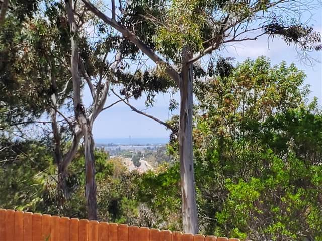870 S S Rancho Santa Fe Rd C, San Marcos, CA 92078 (#190047017) :: The Marelly Group   Compass