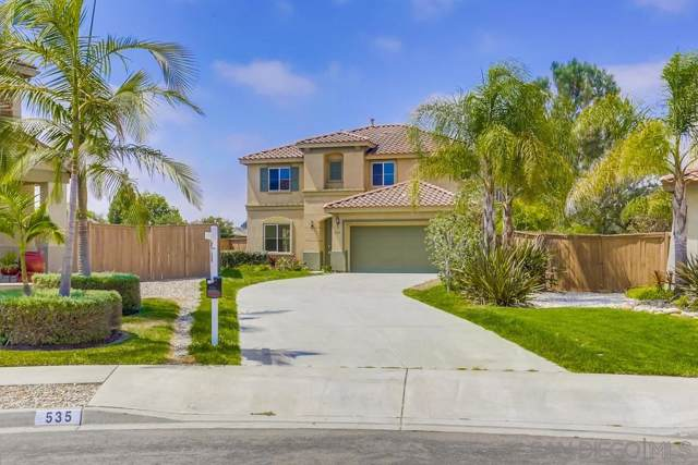 535 Moyla Ct, Oceanside, CA 92058 (#190047076) :: Whissel Realty