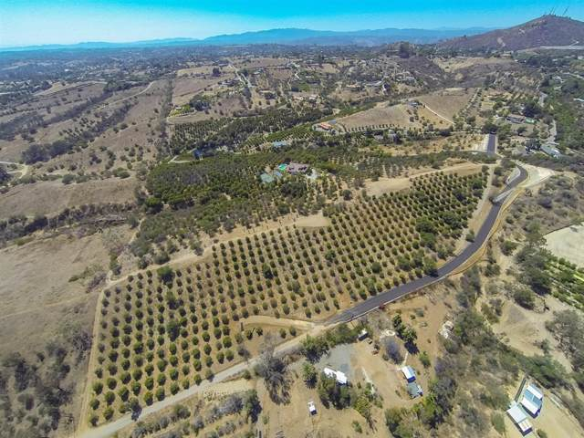 00 Janemar #4, Fallbrook, CA 92028 (#190047139) :: The Stein Group