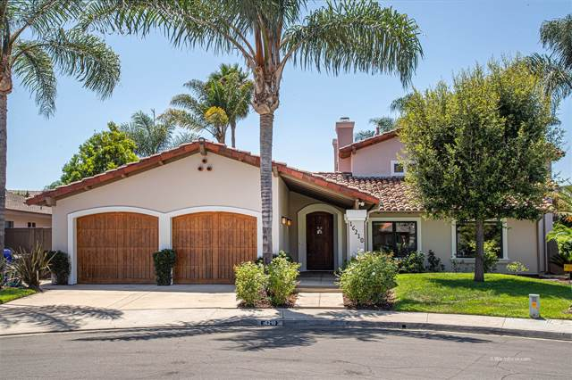 16210 Via Pacifica, Rancho Santa Fe, CA 92091 (#190047348) :: Be True Real Estate