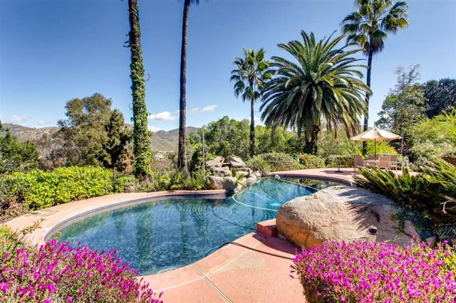 2559 Pence Drive, El Cajon, CA 92019 (#190047400) :: Neuman & Neuman Real Estate Inc.