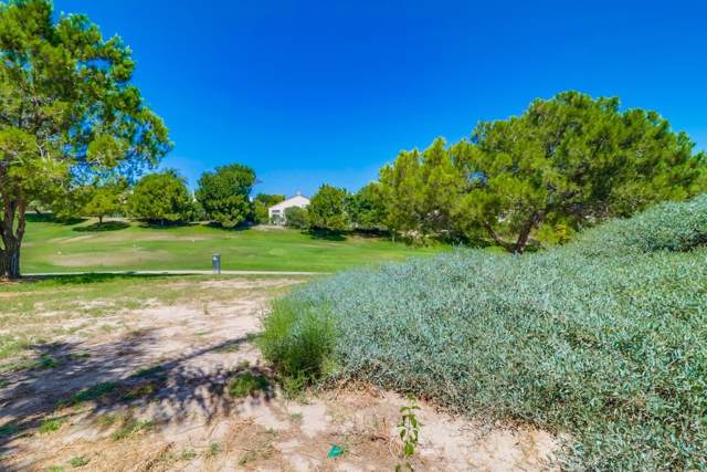 2341 Green River Dr., Chula Vista, CA 91915 (#190049503) :: Neuman & Neuman Real Estate Inc.