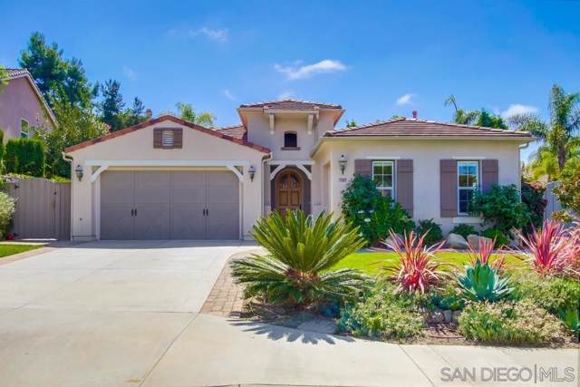3303 Corte Del Cruce, Carlsbad, CA 92009 (#190050233) :: Whissel Realty