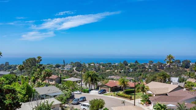 1848 Freda Ln, Cardiff By The Sea, CA 92007 (#190050271) :: Compass