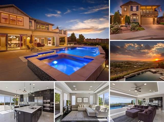 1211 Lexi Court, San Marcos, CA 92078 (#190050460) :: Allison James Estates and Homes