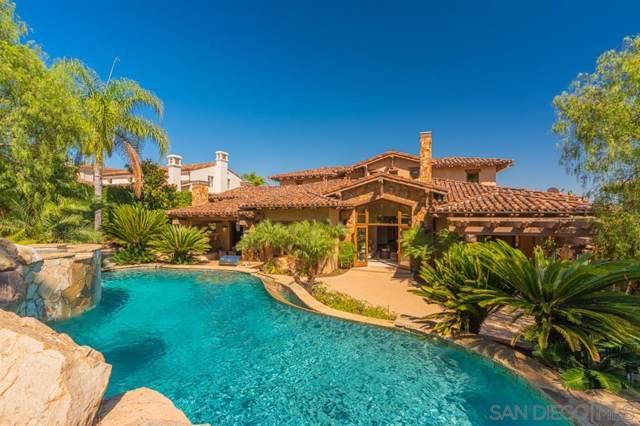 13880 Rancho Capistrano Bend, San Diego, CA 92130 (#190050781) :: Allison James Estates and Homes