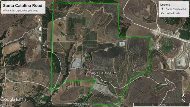 000 Santa Catalina Rd, Valley Center, CA 92082 (#190051329) :: Neuman & Neuman Real Estate Inc.