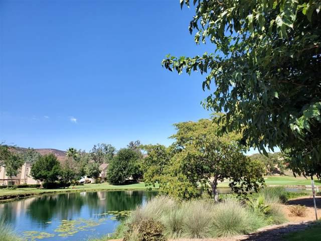 23891 Green Haven Ln, Ramona, CA 92065 (#190051437) :: Neuman & Neuman Real Estate Inc.