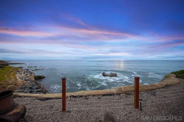 1466-74 Pescadero Dr, San Diego, CA 92107 (#190051544) :: Neuman & Neuman Real Estate Inc.