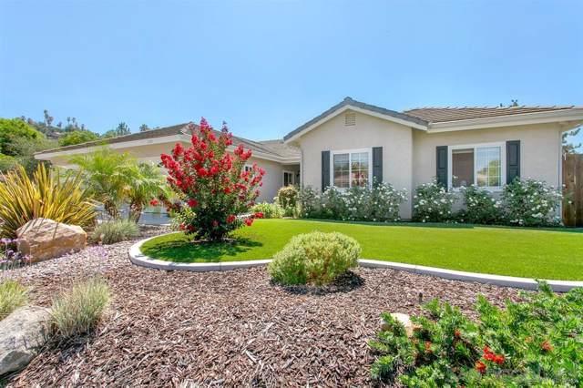 1198 Tres Ninos Corte, Vista, CA 92084 (#190052039) :: Neuman & Neuman Real Estate Inc.