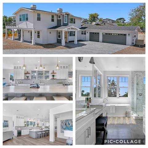 438 Oceanview Terrace, Encinitas, CA 92024 (#190052540) :: Cane Real Estate