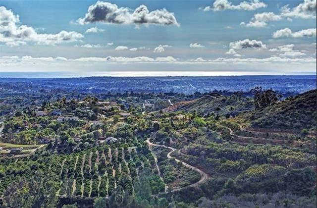0000 Camino De Los Lomas #50, Vista, CA 92084 (#190052581) :: Keller Williams - Triolo Realty Group