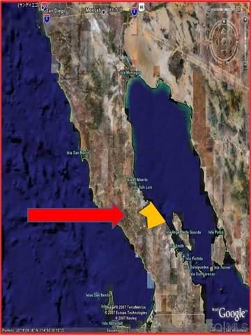 Ejido Galeana Baja. Mexico #313824, Calamajue, CA 99999 (#190052903) :: Allison James Estates and Homes