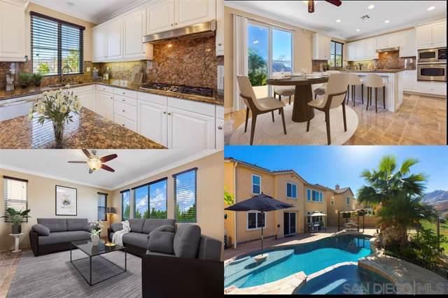3637 Lake Shore Rd, Fallbrook, CA 92028 (#190053111) :: Allison James Estates and Homes