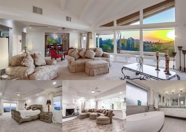 6745 Via De La Reina, Bonsall, CA 92003 (#190053246) :: Allison James Estates and Homes