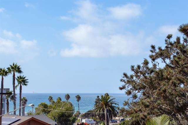 163 Norfolk Dr, Cardiff By The Sea, CA 92007 (#190058263) :: Whissel Realty