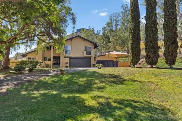 2573 Kauana Loa Dr, Escondido, CA 92029 (#190058913) :: Neuman & Neuman Real Estate Inc.