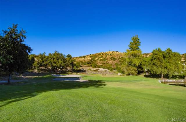 23891 Green Haven Ln, Ramona, CA 92065 (#190059182) :: Whissel Realty