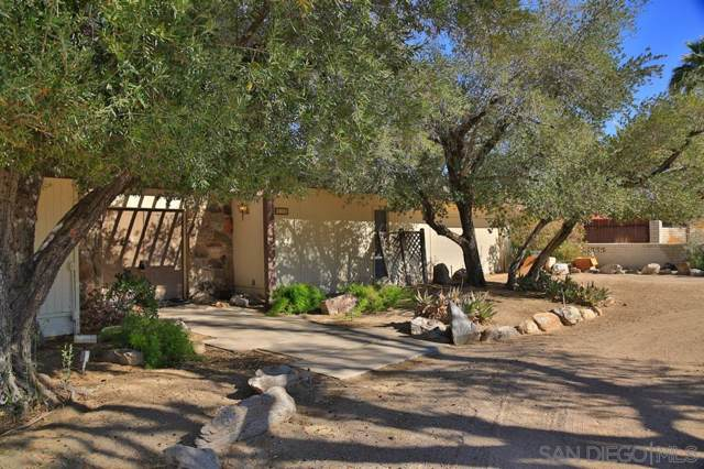 426 De Anza Spur, Borrego Springs, CA 92004 (#190059549) :: Neuman & Neuman Real Estate Inc.
