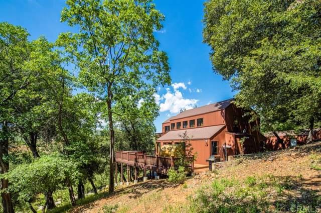 937 Toyon Mountain Lane, Julian, CA 92036 (#190060520) :: Neuman & Neuman Real Estate Inc.