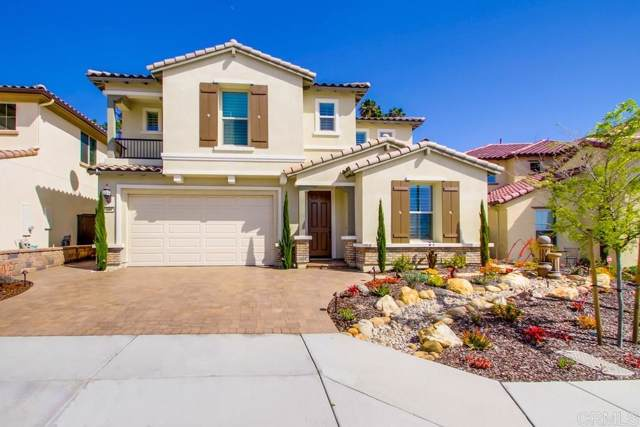 449 Cota Lane, Vista, CA 92083 (#190061551) :: Allison James Estates and Homes